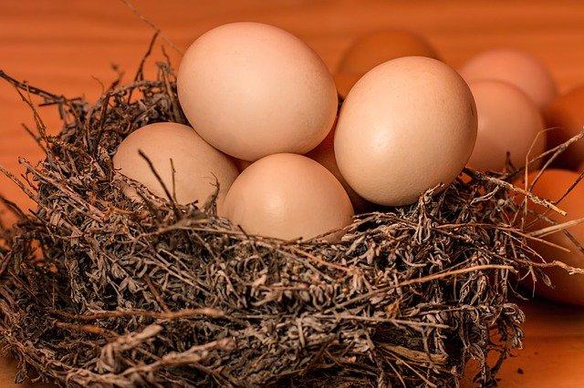 大栄翔は卵かけご飯作りが上手!手術後の経過は順調?結婚する彼女はいる?
