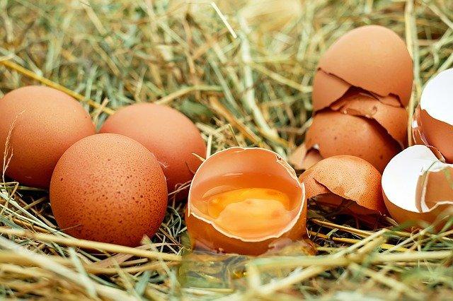 西垣源正のwikiプロフや経歴!卵かけご飯専門店の店名や場所はどこ?